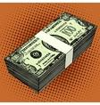 bundle of hundred-dollar bills vector image