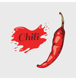Sketched ripe chili pepper isolated on white vector image