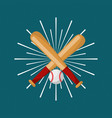 baseball bat and ball sport sunburst color vector image