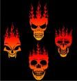 Burning Skulls vector image vector image