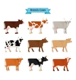 Cow flat icons vector image vector image