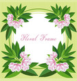 flower frame1 vector image vector image