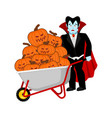 halloween wheelbarrow and vampire dracula bunch vector image