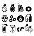 Pineapple fruit pineapple slices juice icons