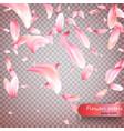 pink sakura falling petals background vector image vector image