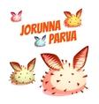 Set of sea cute slug Jorunna Parva vector image vector image