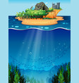 Underwater and island vector image vector image