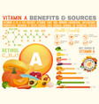 vitamin a infographic vector image vector image