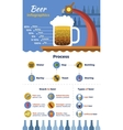 Beer Flat Infographic vector image