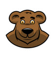 cartoon bear head vector image