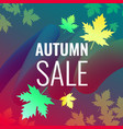 discounts autumn bright background vector image