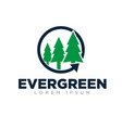evergreen logo designs simple modern green color vector image vector image