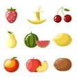 Flat design icons fresh fruit apple cherry vector image vector image