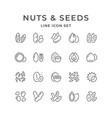 Set line icons of nuts and seeds