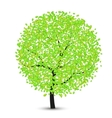 tree with leaves on a white vector image