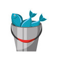 fishing bucket with fishs vector image vector image