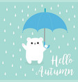 hello autumn polar white small little bear cub vector image