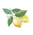 lemon lemon party vector image