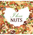 nuts poster peanut or coconut and hazelnut vector image
