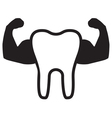 Strong Teeth Icon vector image vector image