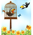 two toucan birds in garden vector image vector image