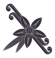 vanilla flower with stitch and leaves spice for vector image