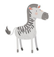 zebra cartoon colorful silhouette in white vector image