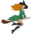 witch on a broomstick in halloween vector image