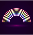 neon tubes rainbow vector image vector image