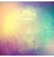 summer holidays sunset with defocused lights vector image vector image