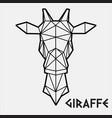 abstract polygonal geometric head a giraffe vector image vector image