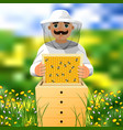 beekeeper on apiary a man in a white beekeeper vector image