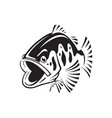 graphic bass fish vector image vector image