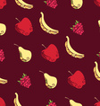 Seamless pattern of fruits and berries on brown vector image vector image