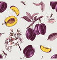 seamless pattern with hand drawn plum flowers and vector image vector image