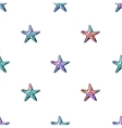 Exotic starfishes colorful seamless pattern vector image