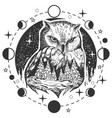 owl tattoo or t-shirt print design vector image vector image