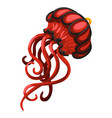 pendant in the form of a red jellyfish isolated on vector image vector image