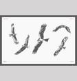 set high detail hand drawn flying eagles vector image