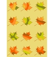 Set of maple leaves isolated mosaic maple leaf in vector image