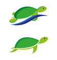 turtles2 vector image vector image