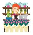 Florist at flower shop vector image vector image