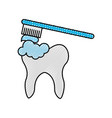 human tooth with toothbrush vector image vector image