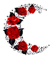 Moon of Red Roses vector image vector image