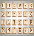 scandinavian wooden runes vector image