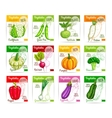 Vegetables price cards or labels set vector image vector image