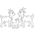goat kid and he-goat vector image vector image