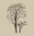 hand drawn of two tree vector image vector image