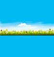 spring nature landscape banner with flowers and vector image vector image