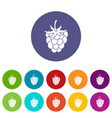 blueberries icons set flat vector image vector image
